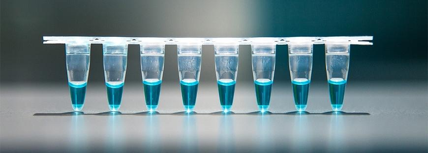 AzuraView GreenFast qPCR Blue Mixes